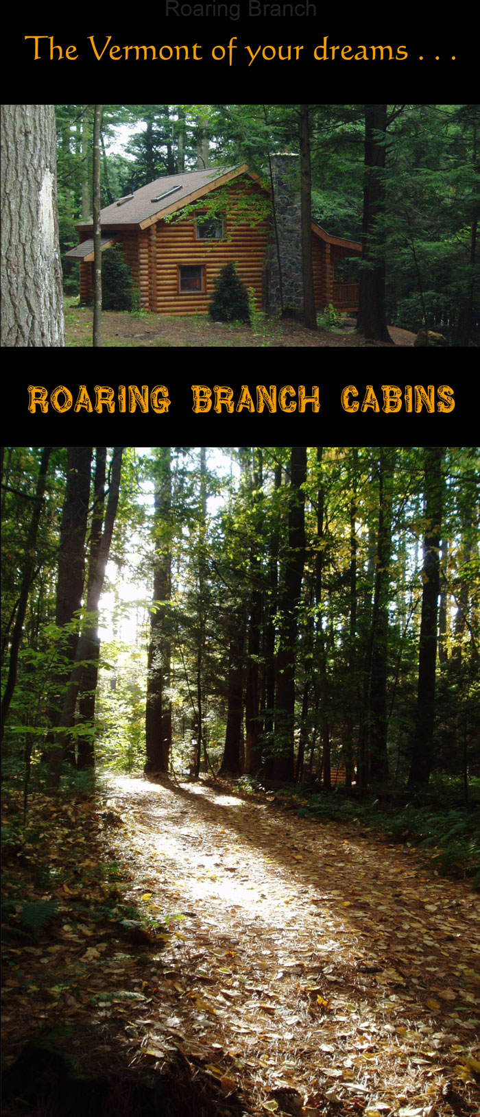 Roaring Branch Cabins